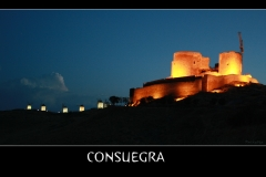 CASTILLO Y MOLINOS CONSUEGRA